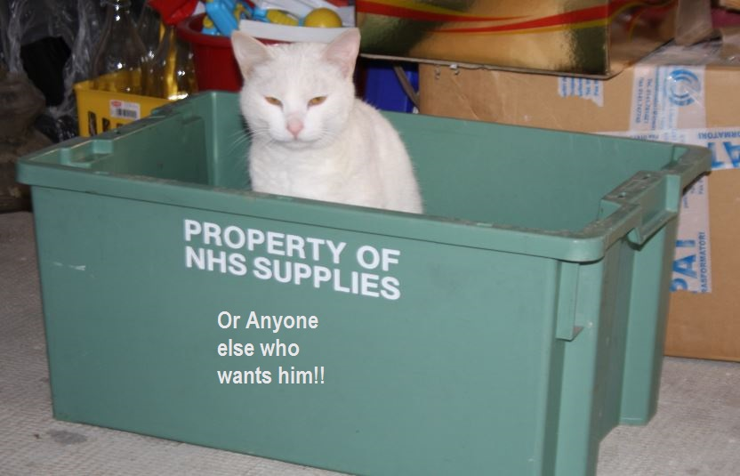 I am patiently waiting for NHS Supplies to come and collect their cat