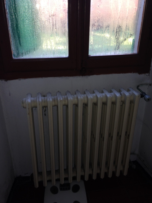 Modern radiator in my bathroom